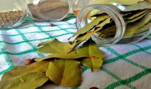 Substitutes for bay leaf