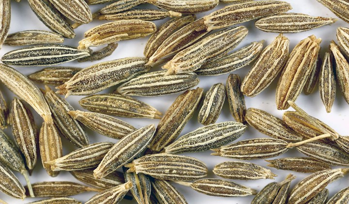 Substitute for cumin seeds